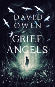 Image for Grief angels