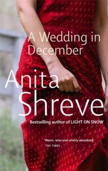 Image for A wedding in December  : a novel