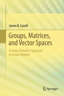Image for A group theoretic approach to abstract linear algebra