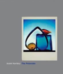 Image for The polaroids
