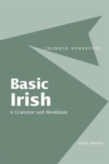 Image for Basic Irish  : a grammar and workbook