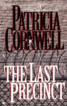 Image for The Last Precinct