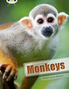 Image for Bug Club Guided Non Fiction Year 3 White A Monkeys