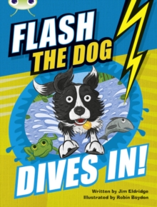 Image for Bug Club Independent Fiction Year 3 Brown B Flash the Dog Dives In!