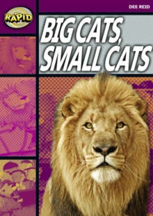 Image for Rapid Reading: Big Cats Small Cats (Stage 1, Level 1A)