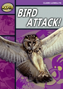 Image for Bird attack!