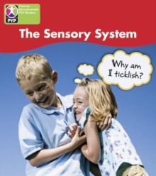 Image for PYP L4 Sensory System 6PK