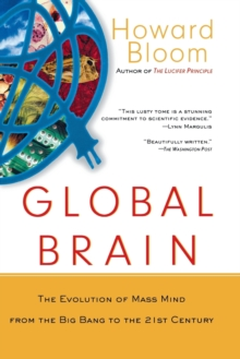 Image for Global brain  : the evolution of mass mind from the Big Bang to the 21st century