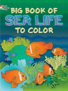 Image for Big Book of Sea Life to Color