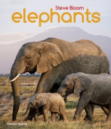 Image for Elephants  : a book for children, with 80 colour photographs