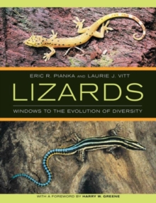 Image for Lizards : Windows to the Evolution of Diversity