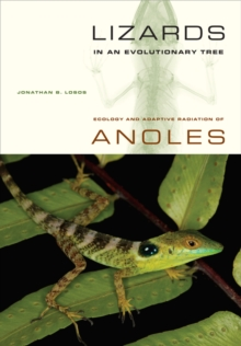 Image for Lizards in an evolutionary tree  : ecology and adaptive radiation of anoles