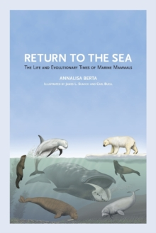 Image for Return to the Sea : The Life and Evolutionary Times of Marine Mammals