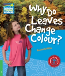 Image for Why do leaves change colour?: Level 3 factbook