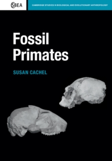 Image for Fossil primates