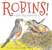 Image for Robins! : How They Grow Up