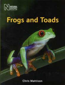 Image for Frogs and toads