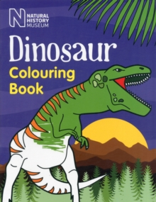 Image for Dinosaur Colouring Book