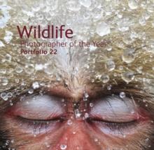 Image for Wildlife photographer of the yearPortfolio 22