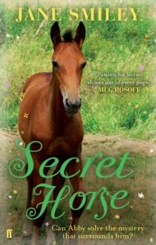 Image for Secret horse