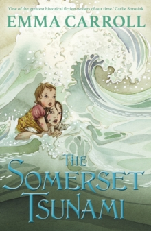 Image for The Somerset tsunami