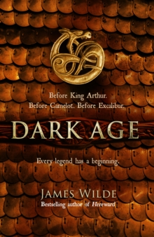 Image for Dark Age