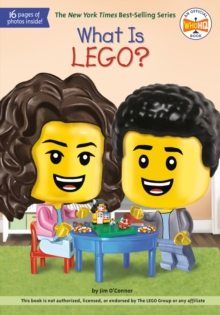 Image for What Is LEGO?