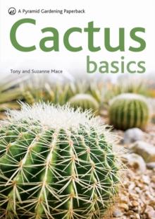 Image for Cactus basics
