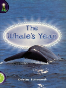 Image for THE WHALES YEAR  GREEN BAND