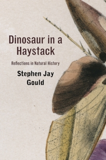 Image for Dinosaur in a haystack  : reflections in natural history