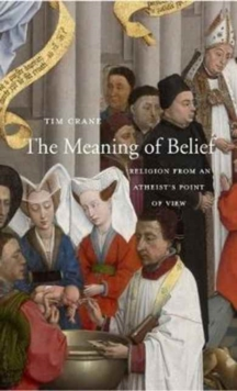 Image for The Meaning of Belief : Religion from an Atheist's Point of View