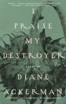 Image for I Praise My Destroyer : Poems