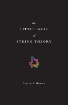 Image for The little book of string theory