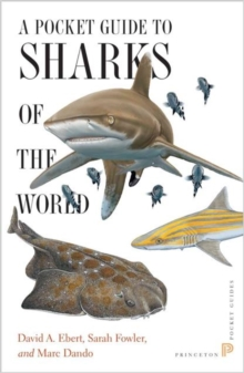 Pocket Guide to Sharks of the World