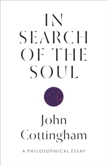 Image for In search of the soul  : a philosophical essay