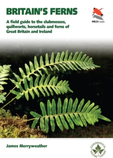 Image for Britain's ferns, clubmosses, quillworts, and horsetails  : a field guide