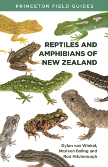 Image for Reptiles and Amphibians of New Zealand