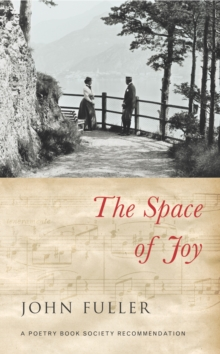 Image for The space of joy