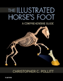 Image for The illustrated horse's foot  : a comprehensive guide
