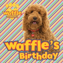 Image for Waffle's birthday
