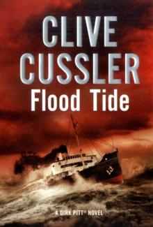 Image for Flood tide  : a novel