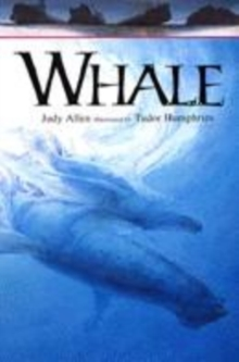 Image for Whale
