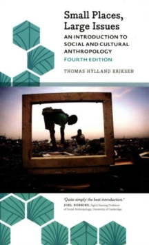 Image for Small places, large issues  : an introduction to social and cultural anthropology