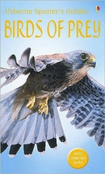Birds of prey - Holden, Peter