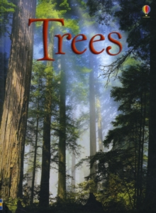 Image for Trees