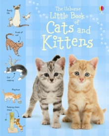 Image for The Usborne little book of cats and kittens