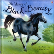 Image for The story of Black Beauty