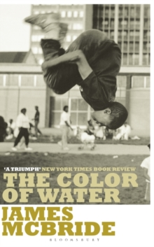 Image for The color of water  : a black man's tribute to his white mother