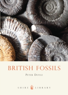 Image for British fossils
