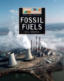 Image for Fossil fuels